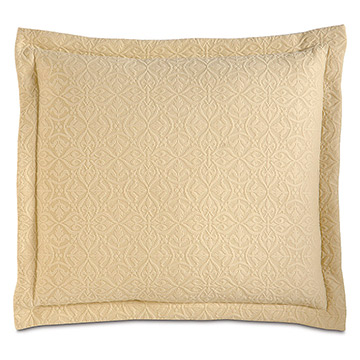 Mea Sunshine Decorative Pillow