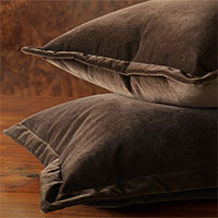 Jackson Solid Velvet - Brown