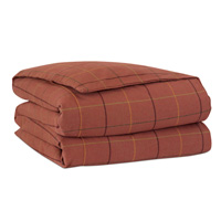 Donoghue Autumn Button-Tufted Comforter