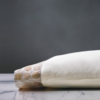 ADRIENNE CHAMPAGNE PILLOWCASE