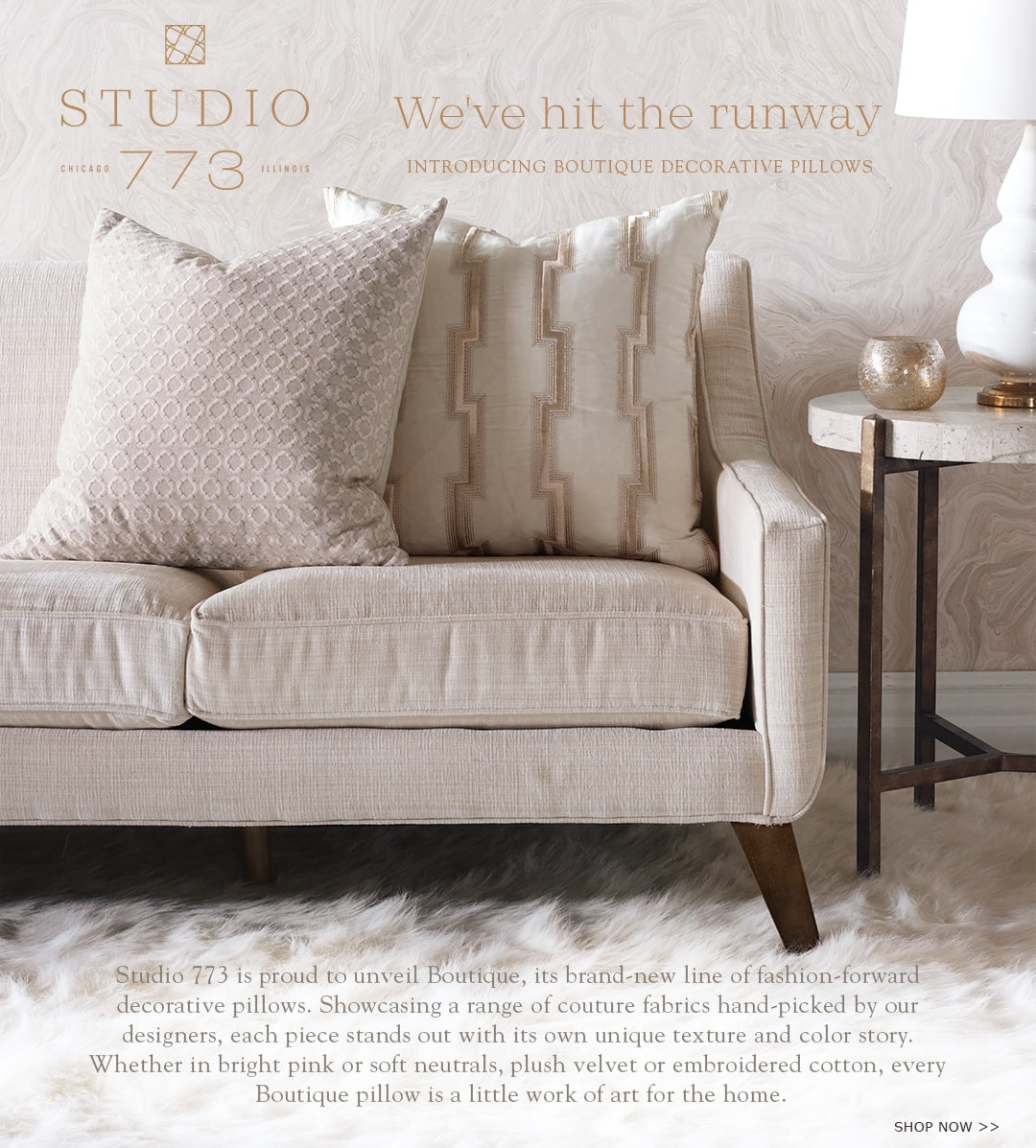 Studio 773 - We've hit the runway Introducing boutique decorative pillows